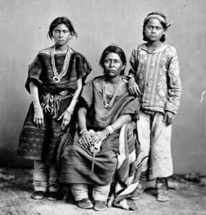 america indian and aborigin history driwancybermuseum s blog